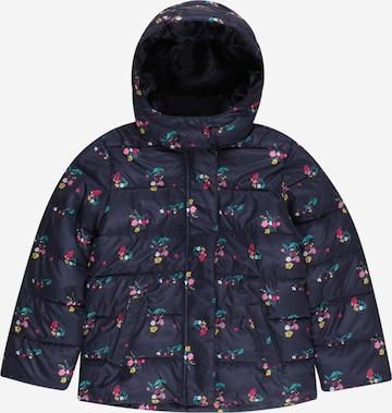 GAP Winter jacket in Blue