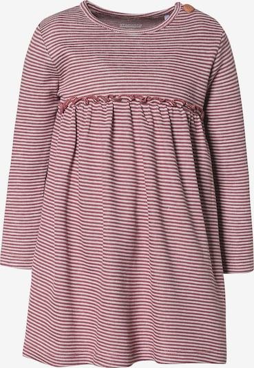 STACCATO Kleid in hellpink / weiß, Produktansicht