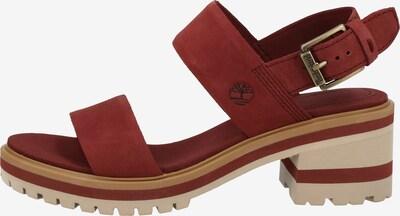 TIMBERLAND Sandalen in rot, Produktansicht