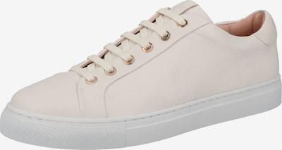 Sneaker low JOOP! pe alb, Vizualizare produs