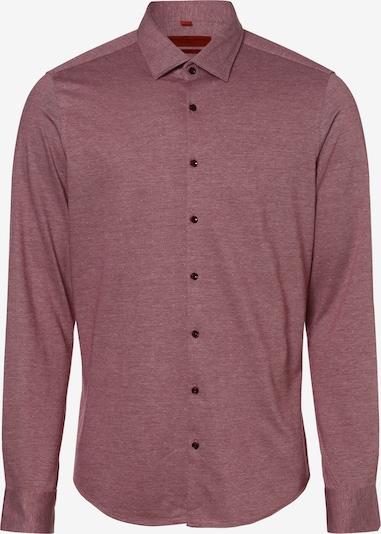 Finshley & Harding Hemd in bordeaux, Produktansicht