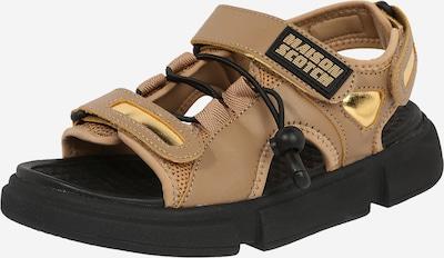 Sandalo 'Daisie' SCOTCH & SODA di colore marrone / oro, Visualizzazione prodotti