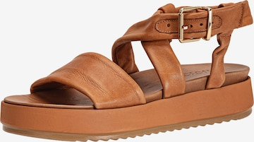 INUOVO Sandalen in Braun