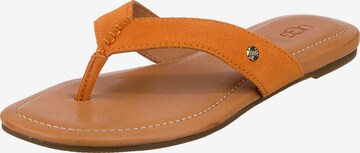 UGG Sandale in Braun