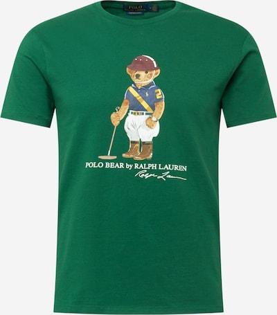 Tricou POLO RALPH LAUREN pe maro deschis / verde / fruct de pădure / culori mixte / alb, Vizualizare produs