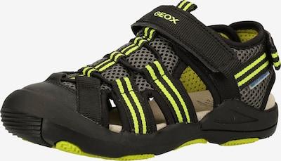 GEOX Sandale in neongelb / schwarz: Frontalansicht