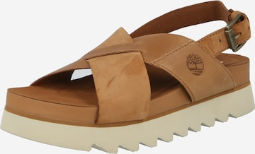 TIMBERLAND Sandals in Brown