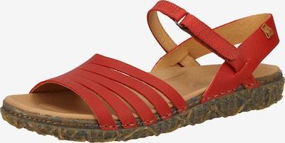 EL NATURALISTA Sandaal in de kleur Rood, Productweergave