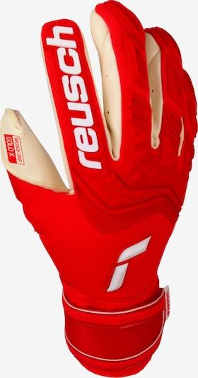 REUSCH Handschuh in weiß, Produktansicht
