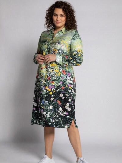 Ulla Popken Košilové šaty - pastelově zelená / mix barev, Model/ka