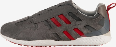 GEOX Sneaker in grau / rot / weiß, Produktansicht