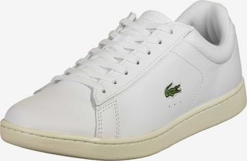 LACOSTE Sneakers laag ' Carnaby Evo ' in Wit