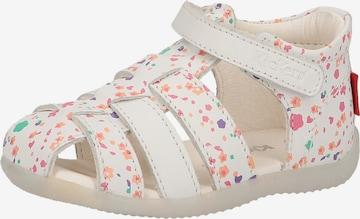 Chaussure basse KICKERS en blanc