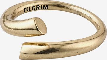 Inele de la Pilgrim pe auriu