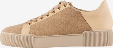 Högl Sneakers 'Cachmere' in Brown