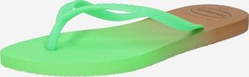 HAVAIANAS T-Bar Sandals in Green
