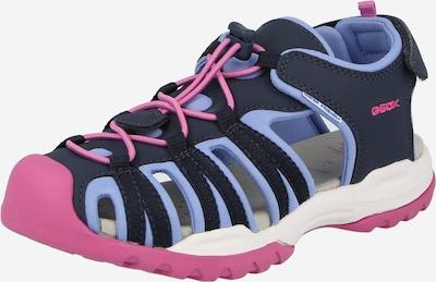 GEOX Sandale in navy / hellpink, Produktansicht