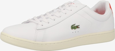 LACOSTE Sneaker 'Carnaby Evo' in grün / rot / weiß, Produktansicht
