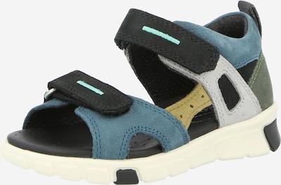 ECCO Open schoenen in de kleur Blauw / Kobaltblauw / Geel / Lichtgrijs / Donkergroen, Productweergave