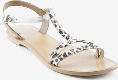 Gioseppo Riemchen-Sandalen in 39 in creme / dunkelbraun / silber, Produktansicht