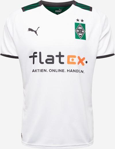 PUMA Maillot 'Borussia Mönchengladbach' en vert / orange / noir / blanc, Vue avec produit