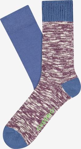 CHEERIO* Socks 'BOOT BUDDY' in Purple