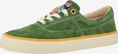 SCOTCH & SODA Sneaker in grün: Frontalansicht