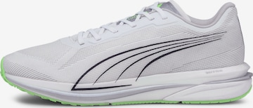 Chaussure de course 'Velocity Nitro' PUMA en blanc