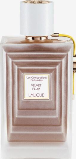 LALIQUE Eau de Parfum 'Velvet Plum' in transparent, Produktansicht