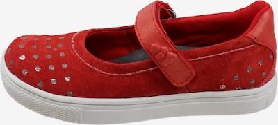 Pio Ballerina 'BLUMEN' in rot, Produktansicht