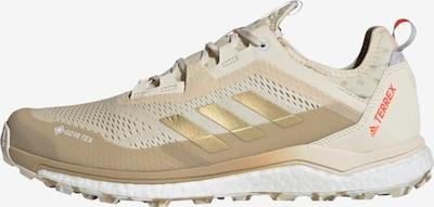 adidas Terrex Laufschuh in creme / gold: Frontalansicht