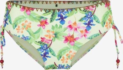 LingaDore Bikinihose in mischfarben, Produktansicht
