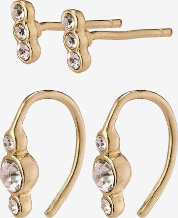 Pilgrim Σετ κοσμημάτων 'Radiance' σε χρυσό