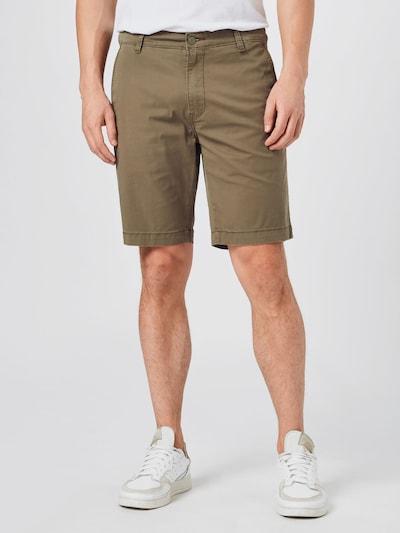 LEVI'S Chino hlače u smeđa, Prikaz modela