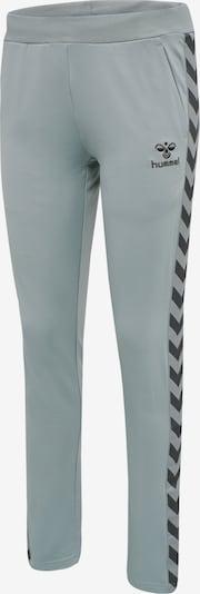 Hummel Pants in grau / dunkelgrau: Frontalansicht