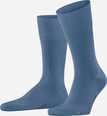 Șosete 'Tiago' de la FALKE pe albastru