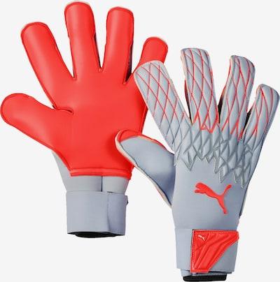 PUMA Handschuh in grau, Produktansicht