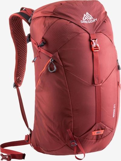 GREGORY Sportrucksack 'Arrio 24 RC' in rostrot / weiß, Produktansicht