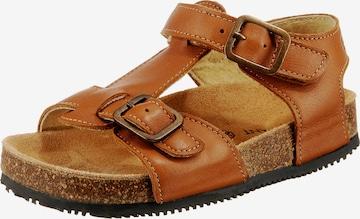 EN FANT Sandale 'Buckles' in Braun