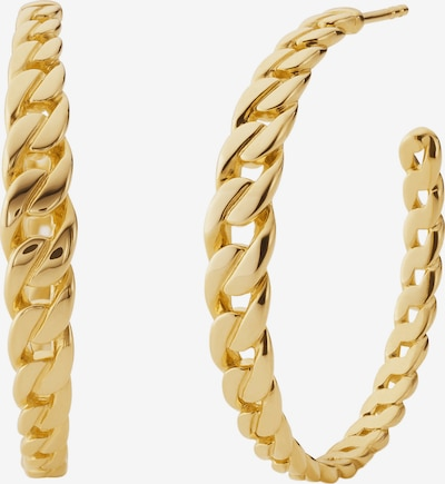 Michael Kors Creole in gold, Produktansicht