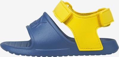 PUMA Zapatos abiertos 'Divecat' en azul noche / amarillo, Vista del producto