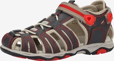 KICKERS Sandale in beige / dunkelblau / grau / hellrot, Produktansicht