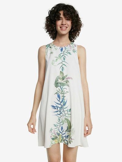 Desigual Kleid in mischfarben / weiß, Modelansicht