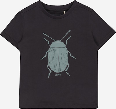 ESPRIT Camiseta en ópalo / antracita, Vista del producto