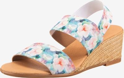 Paul Vesterbro Sandalette in hellblau / mischfarben / rosa / naturweiß, Produktansicht