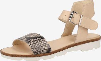 ILC Sandalen in beige, Produktansicht