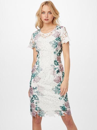 APART Spitzenkleid mit seitlichem Rosen-Print in creme / mischfarben, Modelansicht