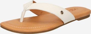 Flip-flops de la UGG pe alb