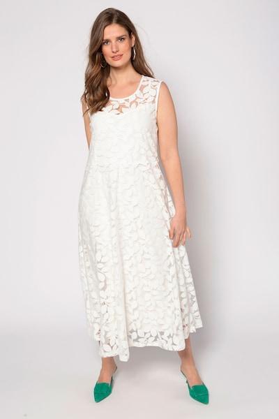 Ulla Popken Kleid in offwhite, Modelansicht