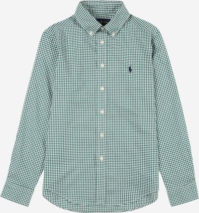 Polo Ralph Lauren Krekls, krāsa - zaļš / balts, Preces skats